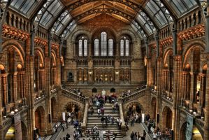 Natural History Museum by OdaOne