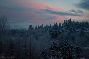 On A Frosty Morning by WinterLover29