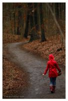 Little Red Riding Hood by Z740