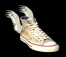flying shoes by Dobrica91