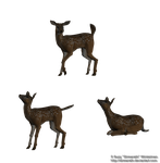 Fawn png stock by Direwrath
