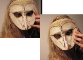 Leather Mask of a Barn owl by teonova