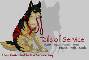 Tails of Service Layout Banner by MetalicX