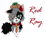 Red Ray's youtube by jayfeather55220