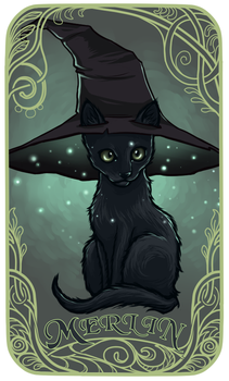 Merlin the Cat by Rvannith