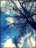 the sky by Marlenne0601