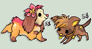 Puppies for sold by griffsnuff