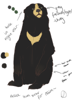 Sun Bear Character For Naim- by Lachilo