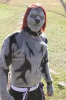 Lion 2013 Halloween Costume by nrr4x5