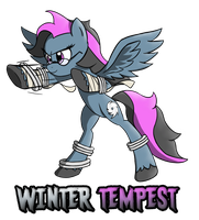 Winter Tempest Commission by Pavagat