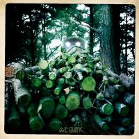 THE BAD WOODPILE by LEQUARK