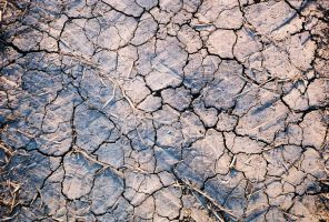 Drought by KofolaCitrus