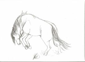 Bucking Horse Sketch by Velvet-Stain