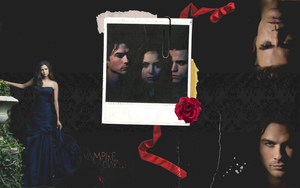 Vampire Diaries wall by Tiate