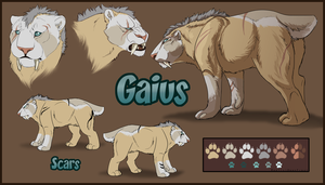 Gaius Ref Commission by DawnFrost