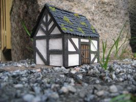 little house2 by trich