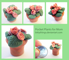 Pocket Plants for Mom - GIFT by Bittythings