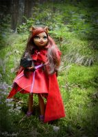 Clawdeen Wolf: Little Dead Riding Hood by BaziKotek