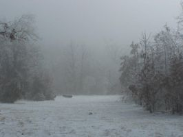 Foggy Winter105 by effing-stock
