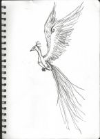 Scribble Pheonix by AnimeMangaRox14