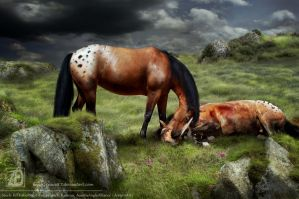 Photomanip: Farewell... by Jenova87
