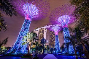 .:Supertrees:. by RHCheng