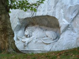 the lion in the wall by lillithspretties