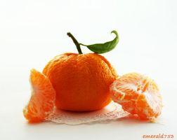 Garden Tangerine by theresahelmer