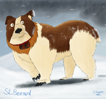 St Bearnard by qwertypictures