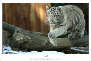 Jump by AF--Photography