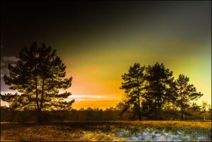 All Starts with a Picture... by db-photoblogDOTcom