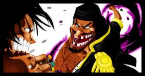 SPOIL - Ace and Blackbeard by Gandaresh