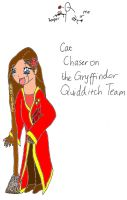 Quidditch Position- Chaser by Zookie-The-Dragon