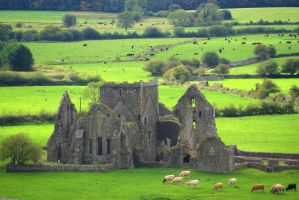 Hore Abbey,Ireland by cheah77