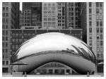 The Bean BnW by TOTE