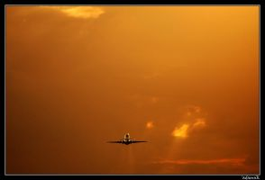 Into the Sunset by adamsik