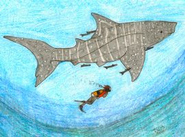 Whale Shark by DwDrawings