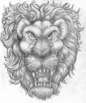 Lion by carbrax