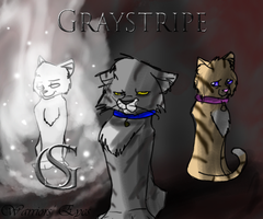 Graystripe Todd by Warriorseyes