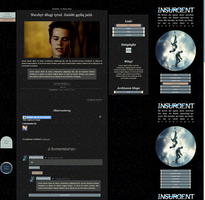 Insurgent1 by sleeplessly by sleep-forever