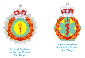 Ambulance Cap and Arm Badges by Ienkoron
