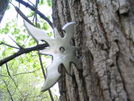 Shuriken in the tree by GoCobra