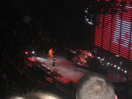 red hot chili peppers concert4 by davidisgay
