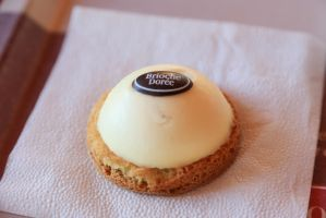 Dome pana cotta by patchow