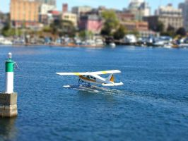Tilt-Shift Seaplane by Austron