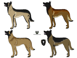 Belgian Malinois Auction - CLOSED by NightCur