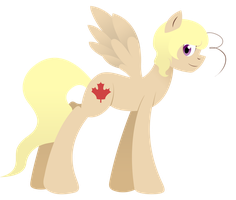 AT: Canada Pony by AskRomaniaPony
