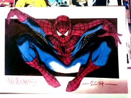 Spidey at Heroes 2014 by BroHawk
