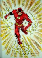 Barry or Wally? by 93Cobra