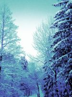 Snowy Forest by CupcakeRemix
